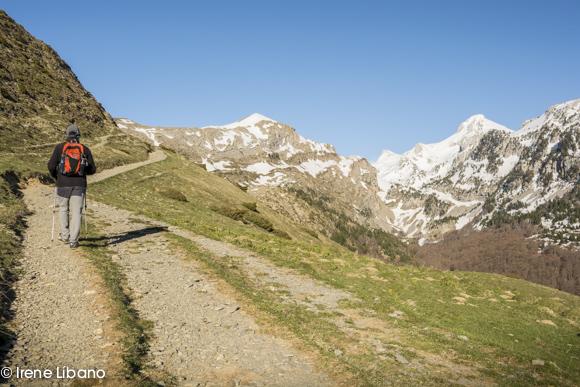 Ruta a Petrechema