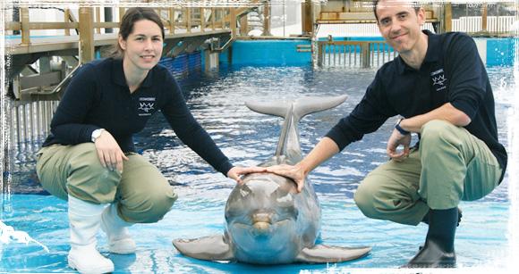 Con los delfines en el Oceanográfico de Valencia